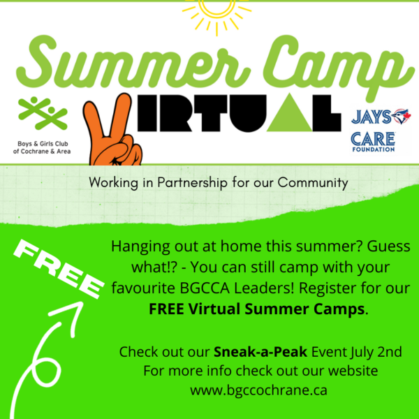 Summer Camp Virtual Poster Image